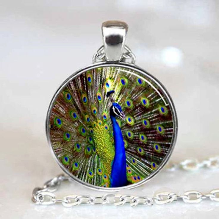 "Peacock Cabochon Glass Silver Pendant Charm 18"" Necklace"