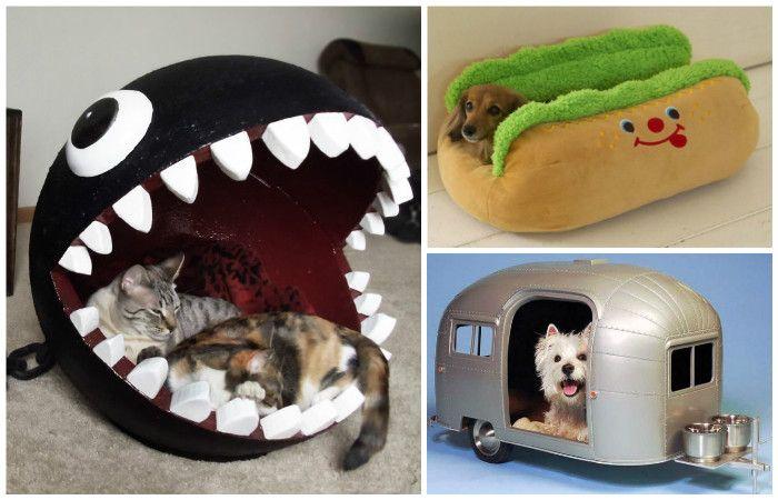 Необычные домики для животных.