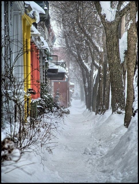 Winter in Montreal.