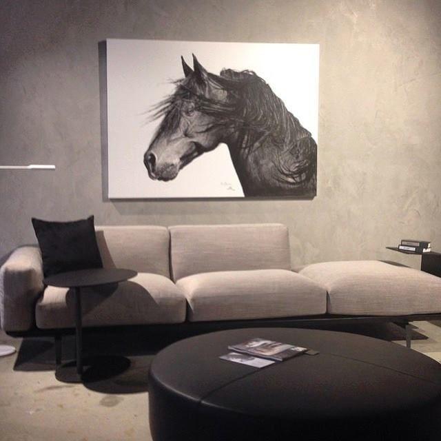 Wild Horse in Camerich WA