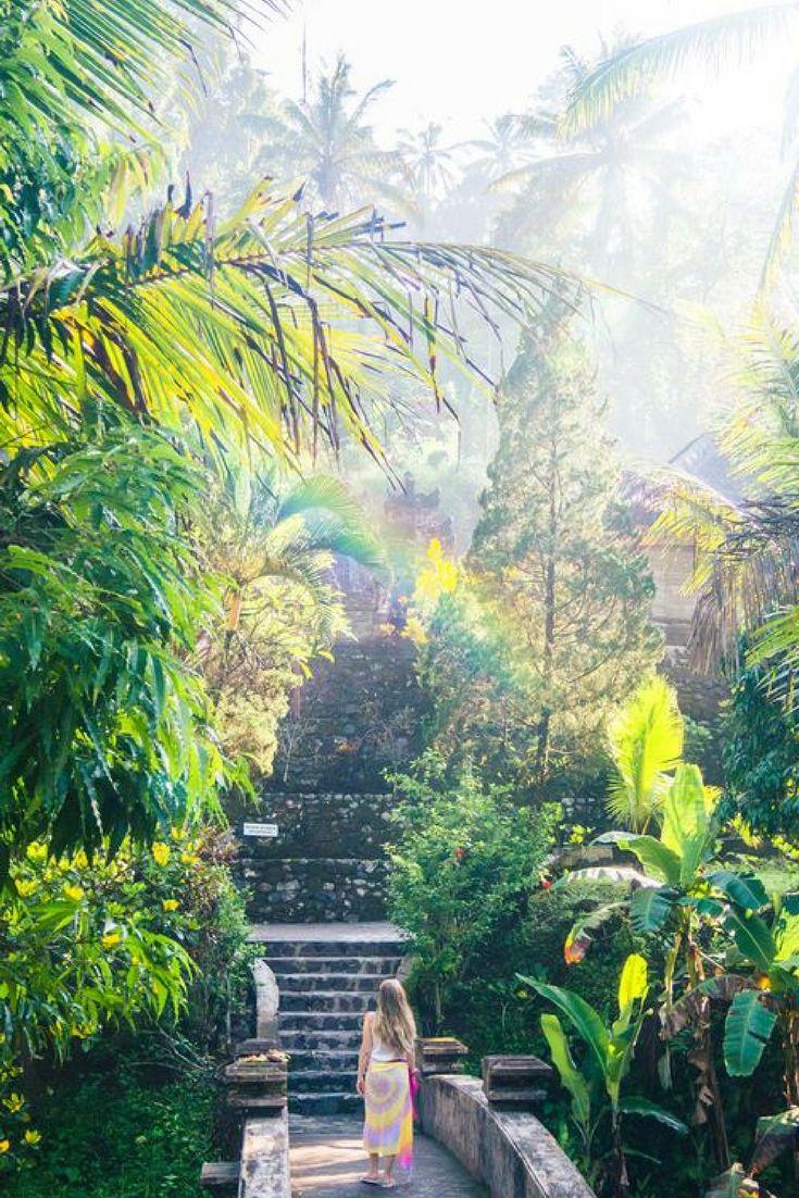 Een vakantie op Bali is al geweldig, maar een 20-daagse rondreis is echt helemaal het EINDE 😍 Als eerste kun je gaan relaxen in Sanur, daarna ga je raften in Ubud en je gaat nog veel meer doen met deze reis, dus ontdek het snel: https://ticketspy.nl/deals/20-dagen-naar-bali-klm-tickets-hotels-ontbijt-transfers-va-e1377/