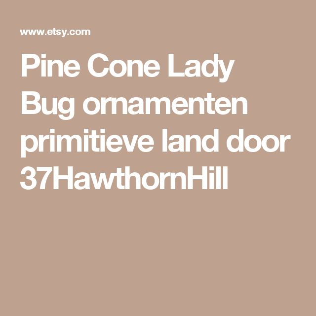 Pine Cone Lady Bug ornamenten primitieve land door 37HawthornHill