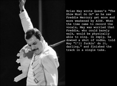 quot;Ill fucking do it, darling.quot;  Freddie Mercury  Its Not All Doom and Gloom  Pinterest