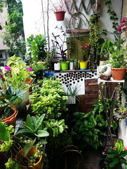 17 Best Images About Zen Balcony Ideas On Pinterest