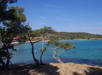Très protégés, ces 12,5 km2 de pins et de sable fin situés au sud de la presqu'île de Giens conservent le goût du paradis en Provence.