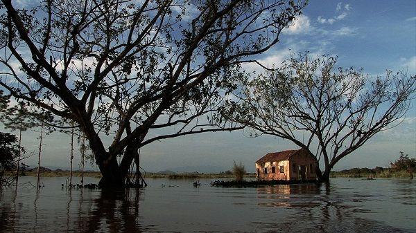 Agronegócio brasileiro contribui para o aquecimento global |