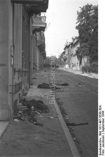 Arnhem dating
