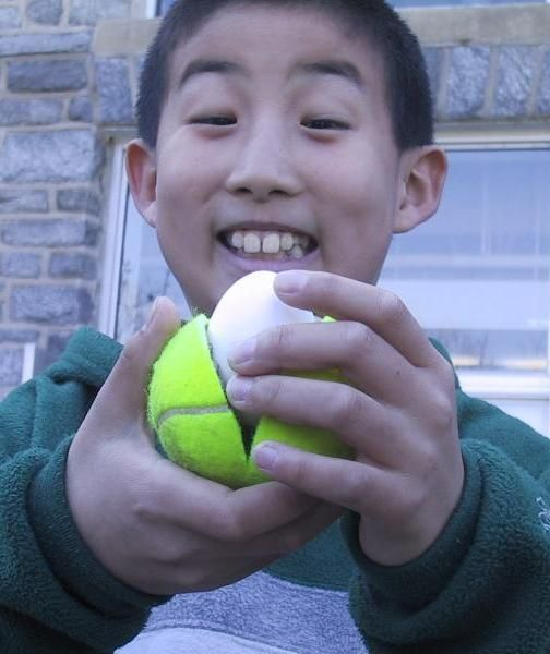 your egg will be save if you put it in a tennis dall