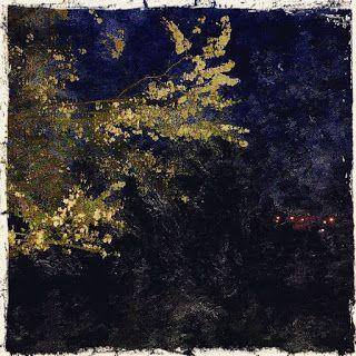 Irene Navarra / Visioni: Haiku / BluAstrazione.
