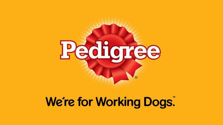 Pedigree, Dog Food, Pedigree Logo, Pedigree Dog Food Brand Logo
