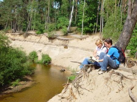 Het Lutterzand leent zich goed voor een lange wandeltocht. Er zijn 5 uitgezette wandelroutes (d.m.v. paaltjes) die u langs de mooiste plekjes van het lutterzand voert.   Deze zijn verschillend in lengte; van 4-7 km. Tevens begint en eindigt bij ons de kribbenbrug route van het wandelknooppuntenroute (s 11).  www.lutterzand.nl