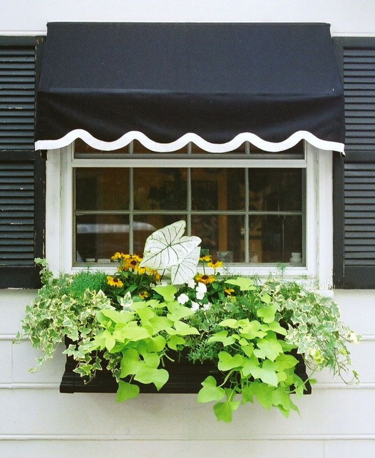 My Kitchen window box | Window Box Contest