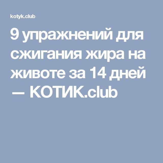 9 упражнений для сжигания жира на животе за 14 дней — КОТИК.club