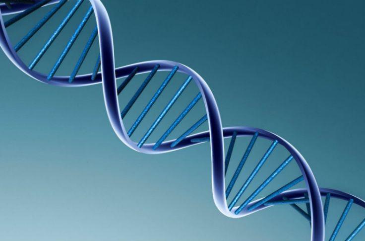 Variante genética rara pode ser causa da esclerose múltipla | #DNA, #Enzima, #Esclerose, #Genética, #GENOMA, #Mutante, #Raquitismo, #VitaminaD