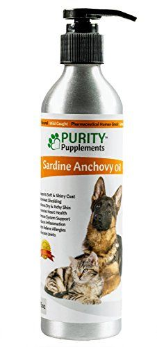17 best ideas about dog skin allergies on pinterest for Fish oil for dog allergies