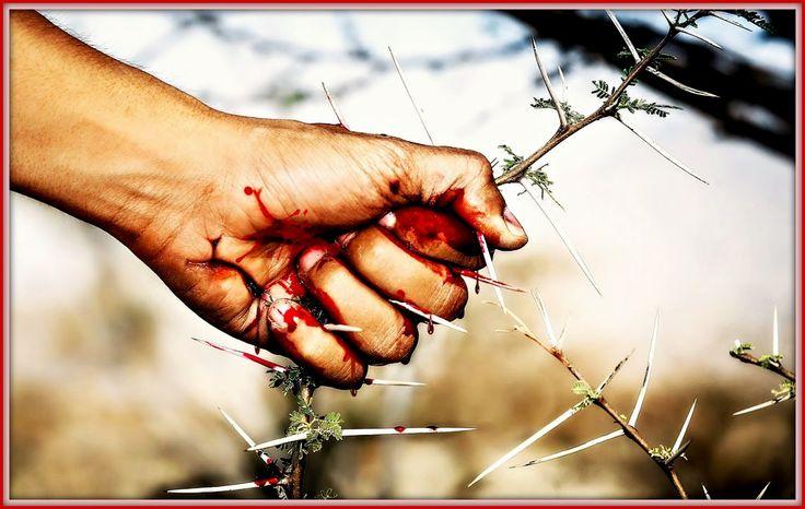 Γη και Ελευθερία.: Από τ' αγκάθι σου έφευγε το δρόμου ο στοχασμός...