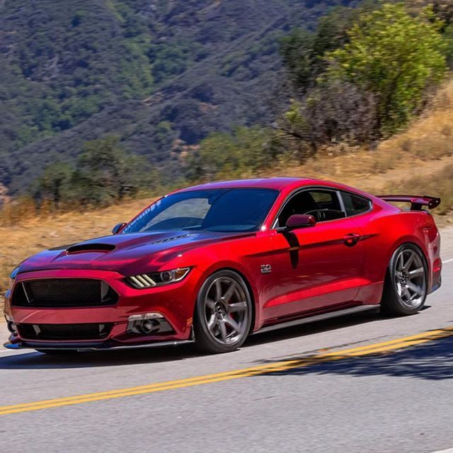 25 best 2015 Mustang Gt500 ideas on Pinterest  2015 shelby gt500