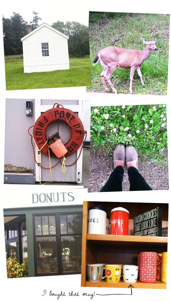 Things to do in Friday Harbor