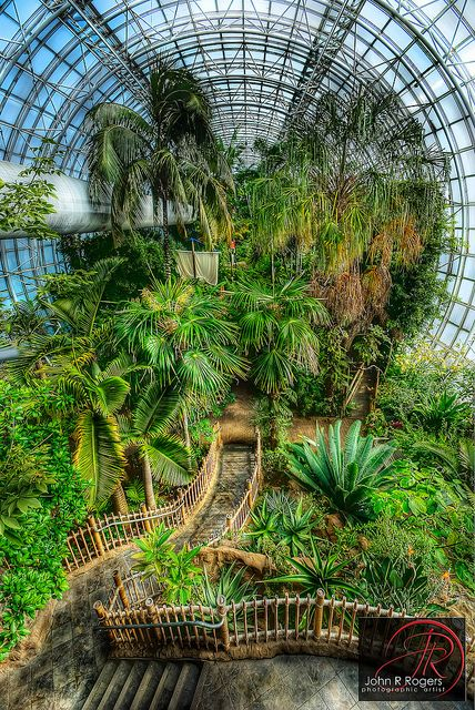 crystal bridge tropical conservatory in oklahoma city, oklahoma.