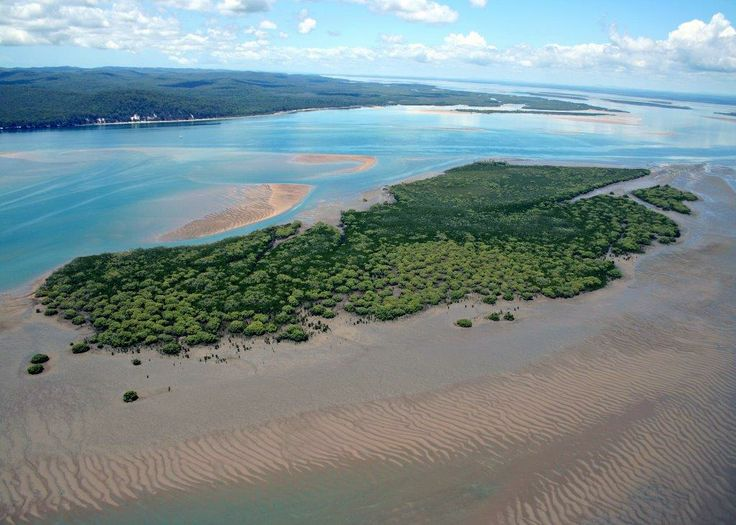 Walsh Island, Great Sandy Strait.  Off Road Adventure Safaris.  www.tourcapeyork.com.au