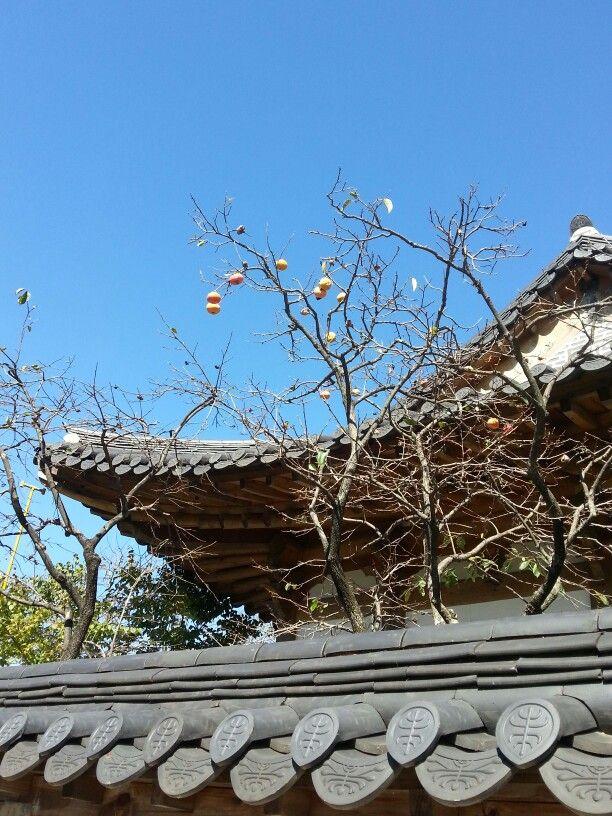 Autumn in Jeonju Hanok village
