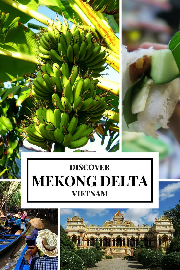 Mekong Delta is our favorite region of Vietnam! Delicious cuisine, beautiful fruit plantations, local villages and more!