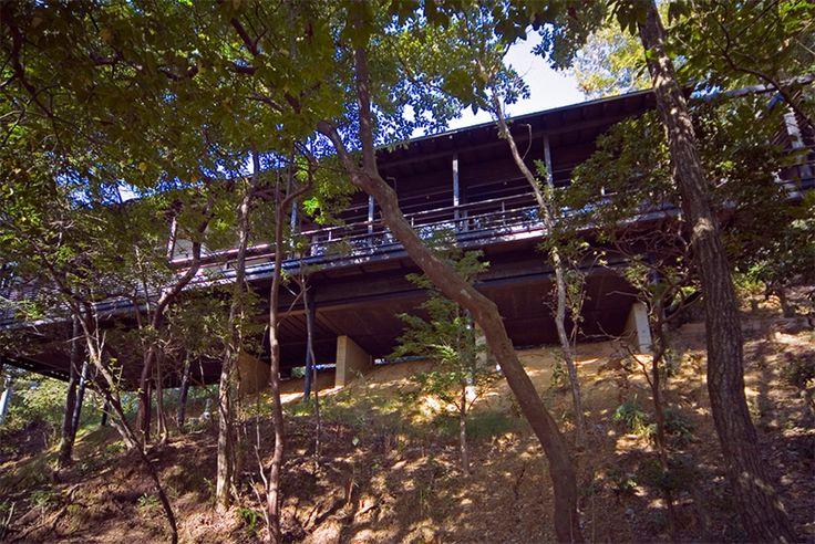 雑木林の斜面地に建つ高床式平屋住宅