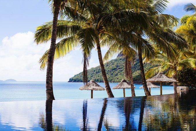 The infinity pool at Hamilton Island's Beach Club - pure tropical island bliss. #HamiltonIsland #Whitsundays