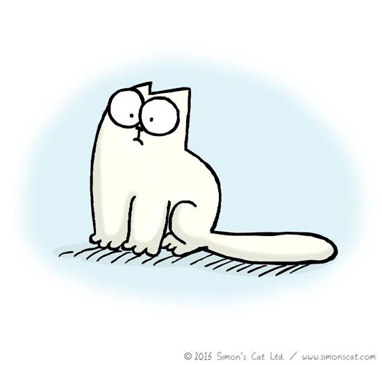 Simon's Cat cat