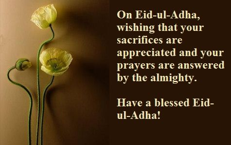Eid ul-adha Mubarak 2016 SMS, Messages in Hindi and Urdu. Eid Mubarak 2016 sms, messages. Happy Eid al adha Eid Mubarak 2016 Messages in hindi and urdu.