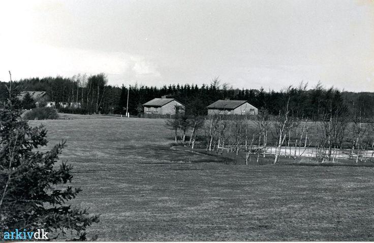 arkiv.dk | Parti fra Hvidevej i Mønsted marts 1985.