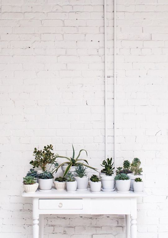 Urban Garden | White Everything | Plant Life | Loft Living | Industrial Gardening | Warehouse Home Design Magazine