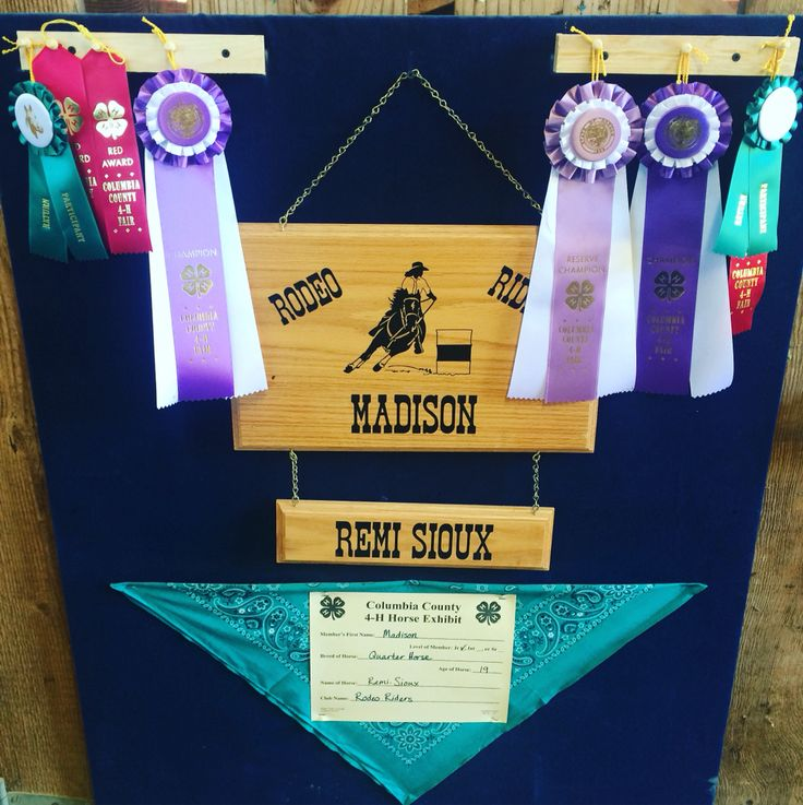 4H Horse Stall Decorations - Queen, Princess, County, State, pigs - Rodeo Riders