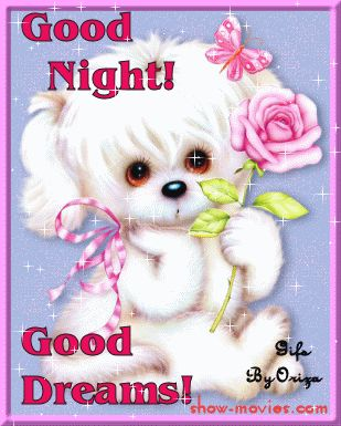 To Cute Night Graphics | good night my love good night and a nice sunrise