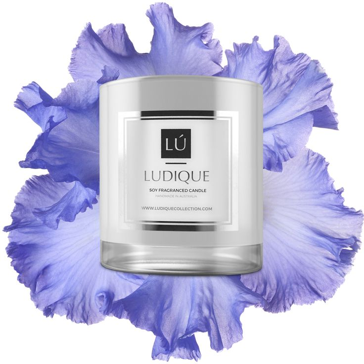 LUDIQUE MAISON BLANC ROSE & SHEER LILY  If you are inspired by the bold sensual scents you've just come across a great find.  Created from distinctive floral aromas of white rose and lily this exciting fragrance can is a perfect choice for all kinds of special occasions. Accentuated with the earthy tones of bergamot, white musk, cedar, amber or peony petals it evokes a sense of luxury and makes any space feel more charming and unusual.