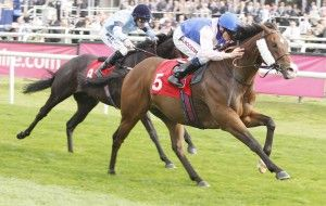 Guide To Bet On Horse Race In The United Kingdom #racing #tipster #tips #betting #race #horse #on #tipping
