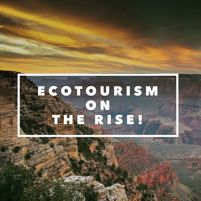 One reason why the Ecotourism industry continues to grow is because the environmentally conscious travelers actually travel more than regular people. That's why we're moving towards a more sustainable tourism industry