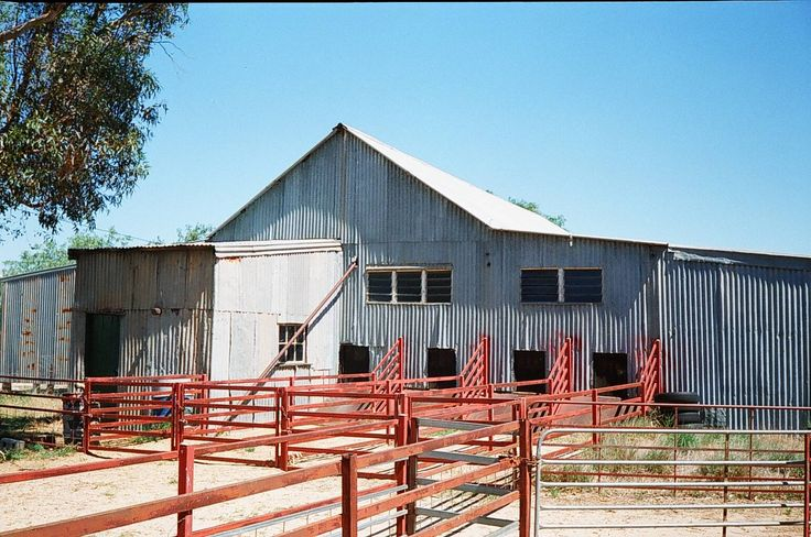 These are the shearing sheds at Avoca. Description from freepages.genealogy.rootsweb.ancestry.com. I searched for this on bing.com/images