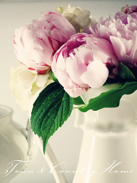 TOWN COUNTRY HOME: Pink Peonies ...