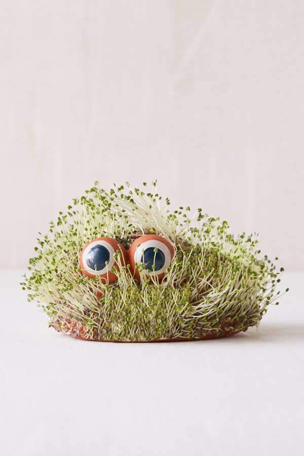 Mini Lil Blob Friend Chia Pet #included#chia#plant | Chia pet ...