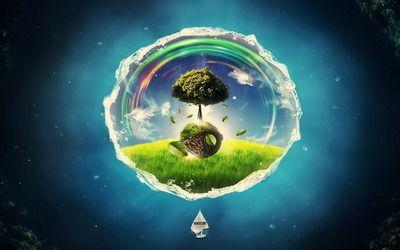 Tree in a bubble wallpaper