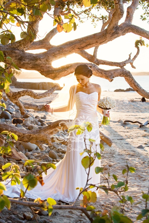 Beautiful Bride at Noosa Beach  The Noosa Wedding Ring Glenda your Co Ordination Planner  www.noosaweddingring.com