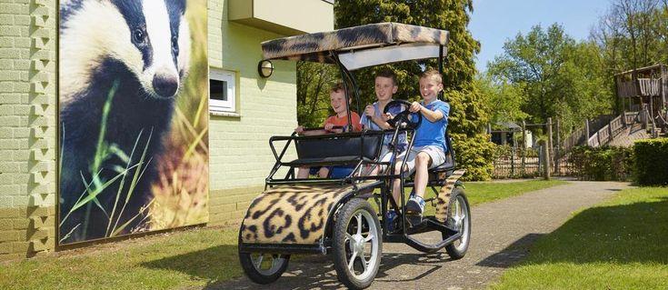 Op dierenthemapark Dierenbos staat Bungalow Das voor grote gezinnen met 6 personen.