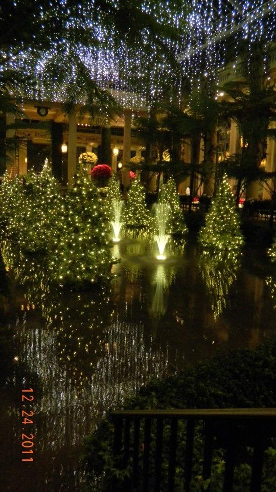 longwood gardens pa christmas displayschristmas lightschristmas - Longwood Gardens Christmas Lights