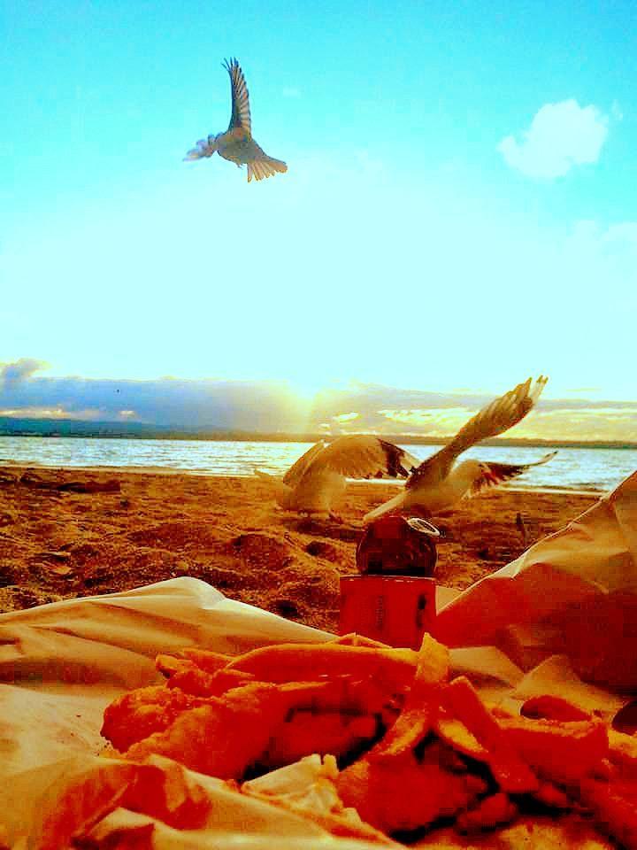Traditional Kiwi kai #summertime #hgh #lad #fishandchips #beachside #bliss