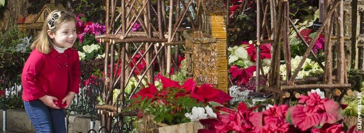 Holiday Display at the Krohn Conservatory