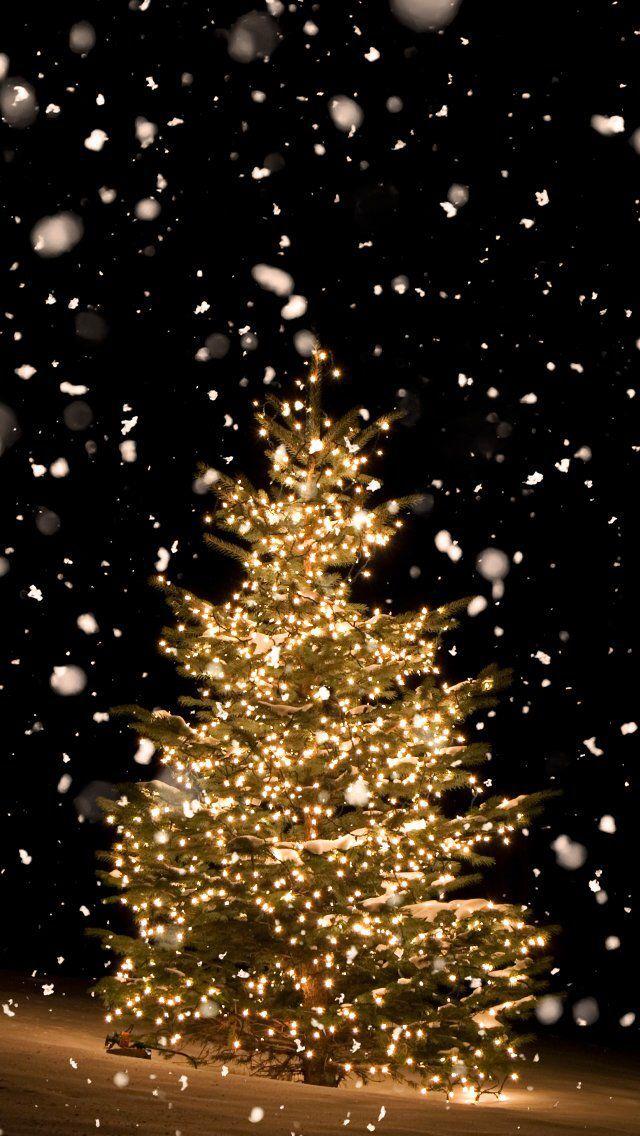 Wallpaper Iphone Holidays Winter Christmas Tree Holidays Iphone Tree Christmas Phone Wallpaper Wallpaper Iphone Christmas Christmas Phone Backgrounds Christmas winter night wallpaper iphone