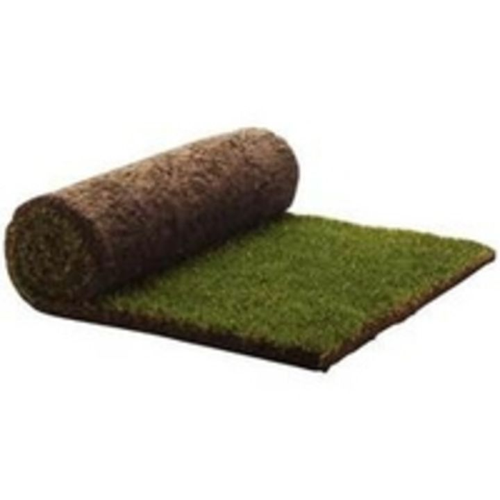 Rolawn Medallion Grass Turf Roll 1m2 - has a new #review on: https://www.gardencentreguide.co.uk/product/97508/rolawn-medallion-grass-turf-roll-1m2/reviews#review-60548 - @gcguide