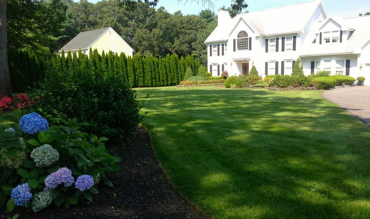1000+ Ideas About Lawn Sprinkler System On Pinterest