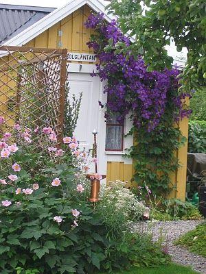 På kolonien med alla deras vackra trädgårdar...